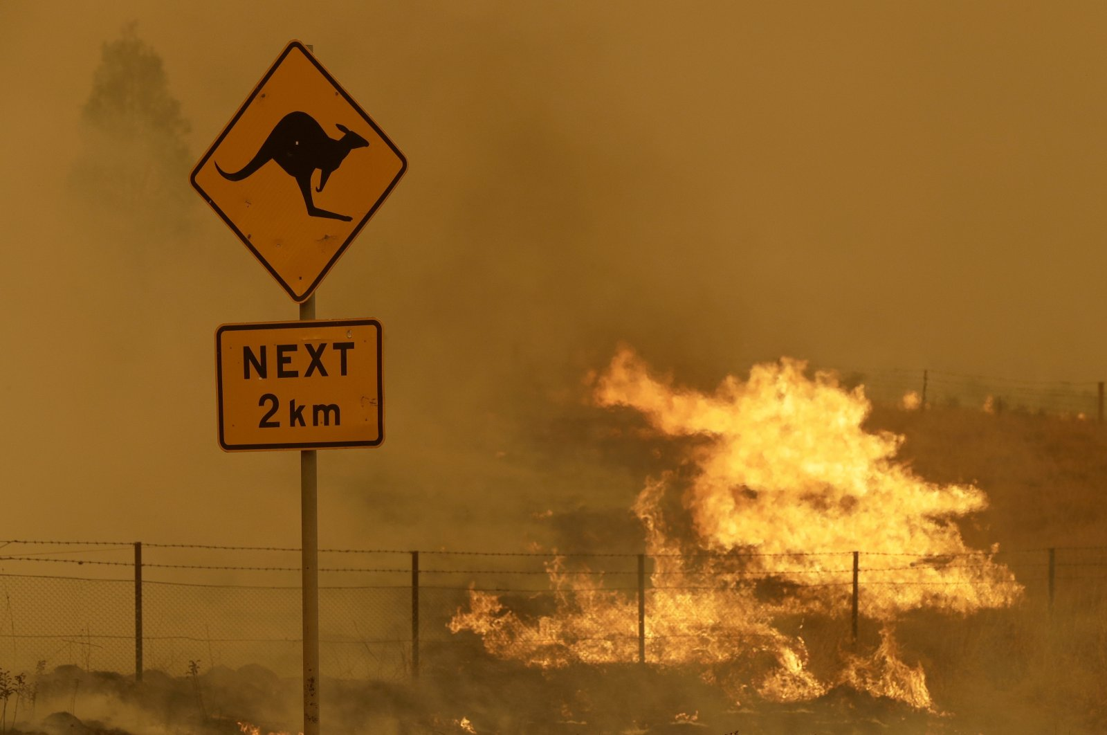 Fire burns in the grass near Bumbalong, south of the Australian capital, Canberra, Feb. 1, 2020. (AP Photo)