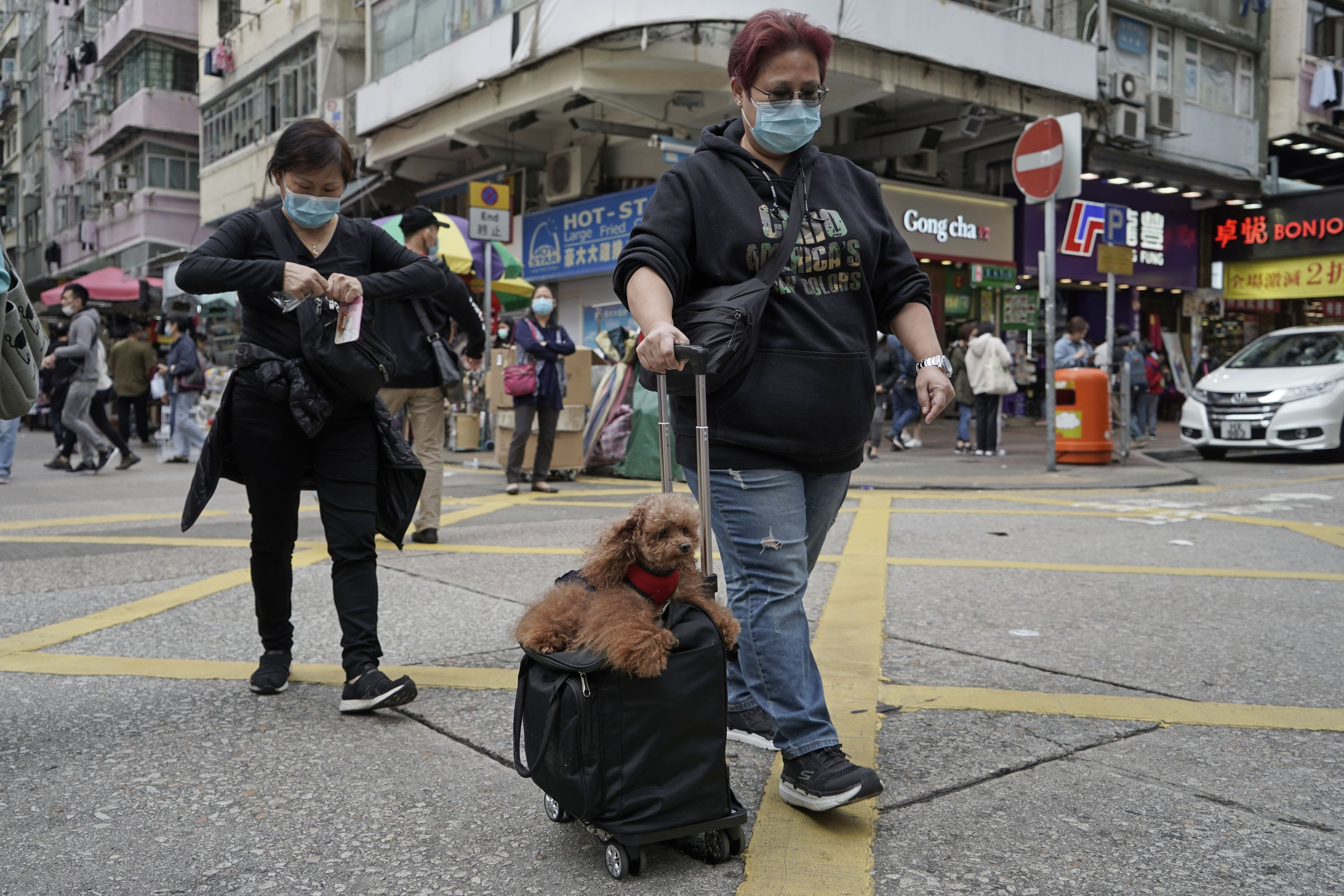 A woman wearing a face mask is seen traveling with her dog and suitcase in Hong Kong, China, March 5, 2020. (AP Photo)