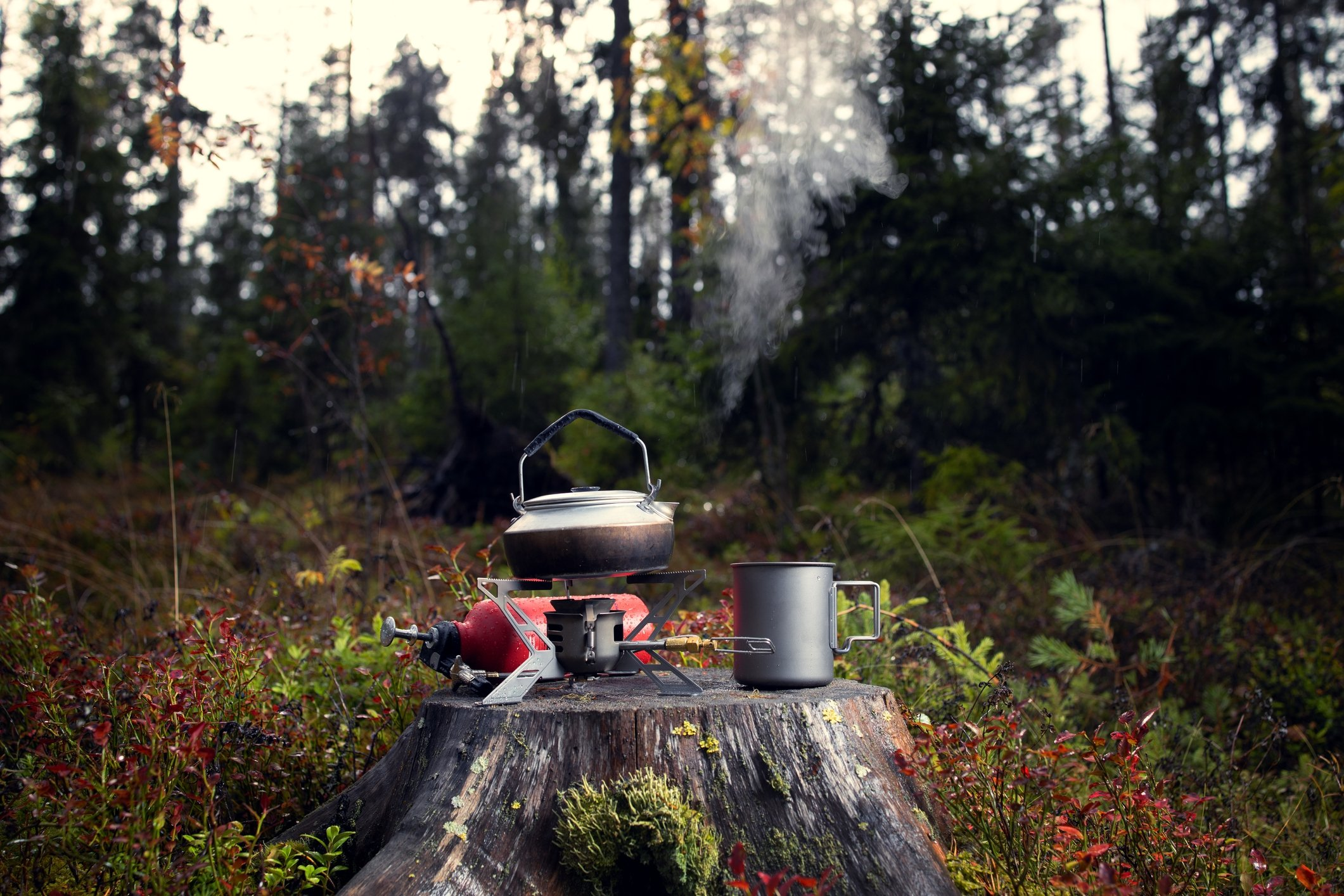 Make sure you bring a camp stove and some utensils to cook on your first long camping trip. (iStock Photo)