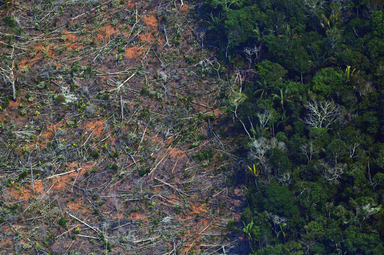 An aerial picture showing a deforested piece of land in the Amazon rainforest near an area affected by fires, Rondonia, northern Brazil on Aug. 23, 2019. (AFP Photo)