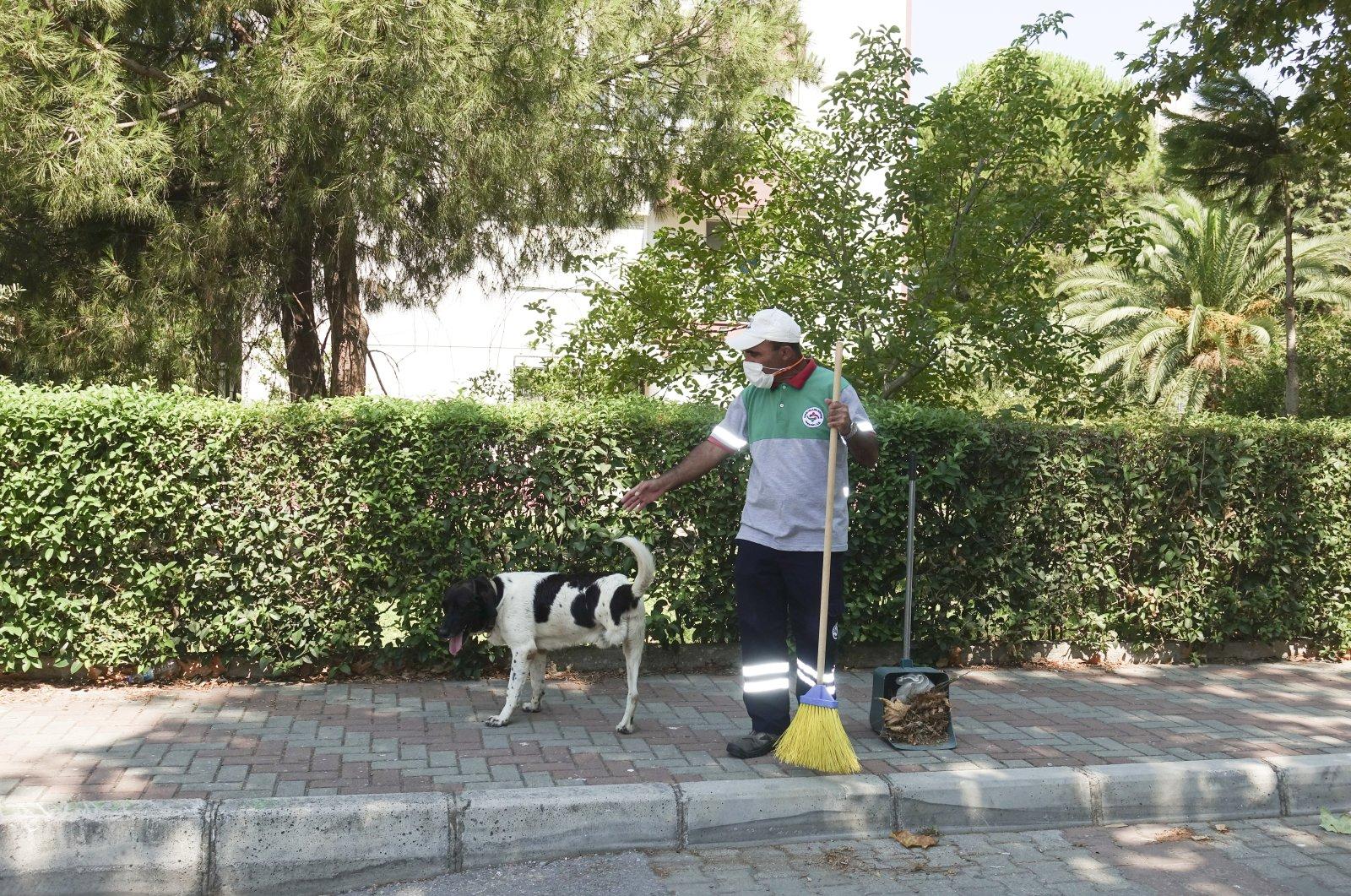 Kola the dog accompanies Mustafa Sağsöz during a regular shift in Izmir, Turkey, Aug. 8, 2020. (AA Photo)