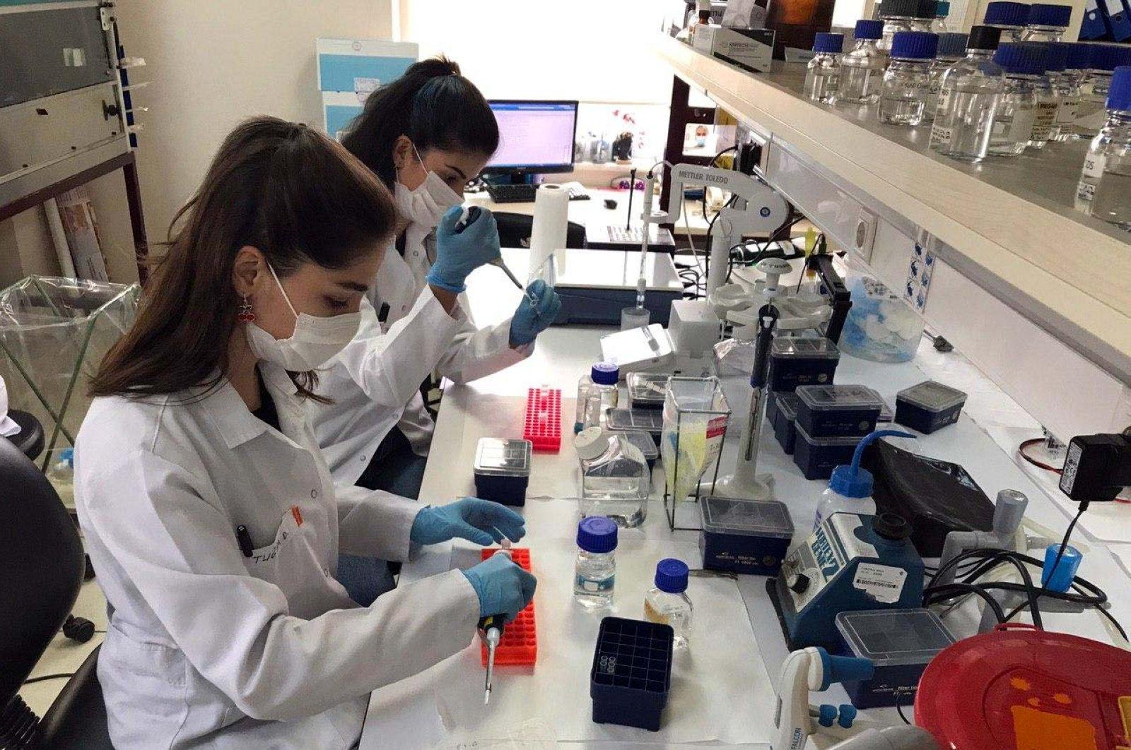 Researchers work at a lab to develop a coronavirus vaccine in Kocaeli, northwestern Turkey, Aug. 11, 2020. (AA Photo)