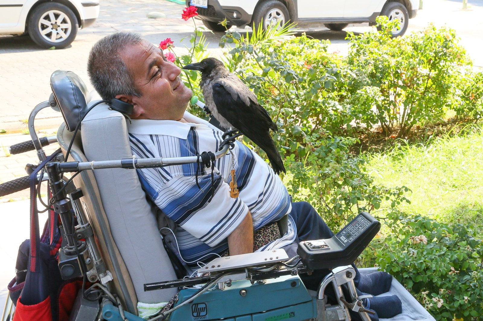 The crow stares at Murat Duran, in Izmir, western Turkey, Aug. 12, 2020. (AA Photo)