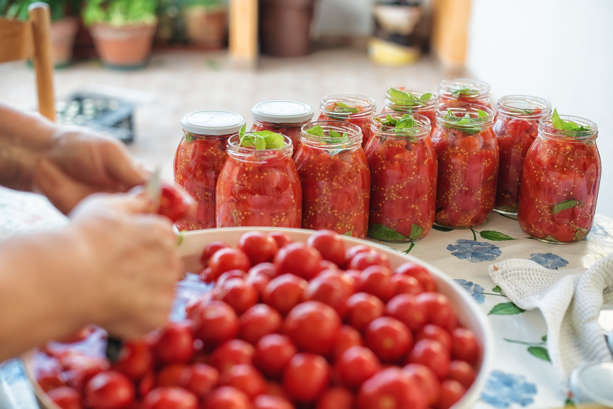 Jarring cooked tomatoes is one of the best ways to preserve summer tomatoes. (iStock Photo)