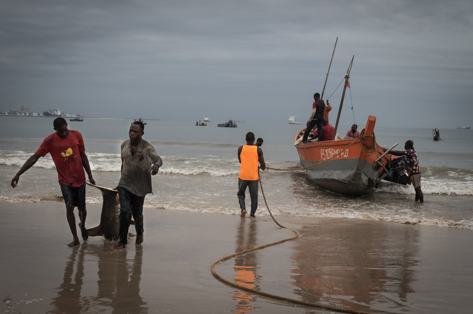 Artisanal fishermen pull a recently caught shark onto the Songolo Beach in Pointe-Noire, the Republic of Congo on Nov. 14, 2019. (Reuters Photo)