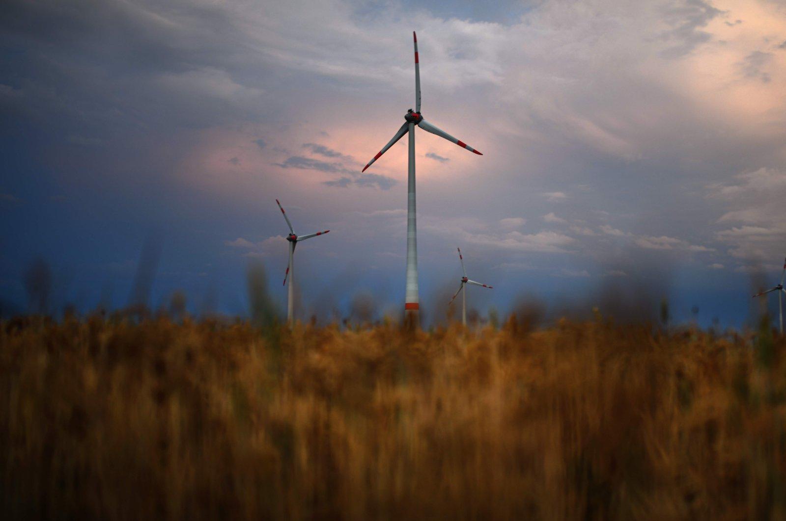 A wind turbine is seen in a cornfield in Schleiden, western Germany, on Aug. 12, 2020. (AFP Photo)