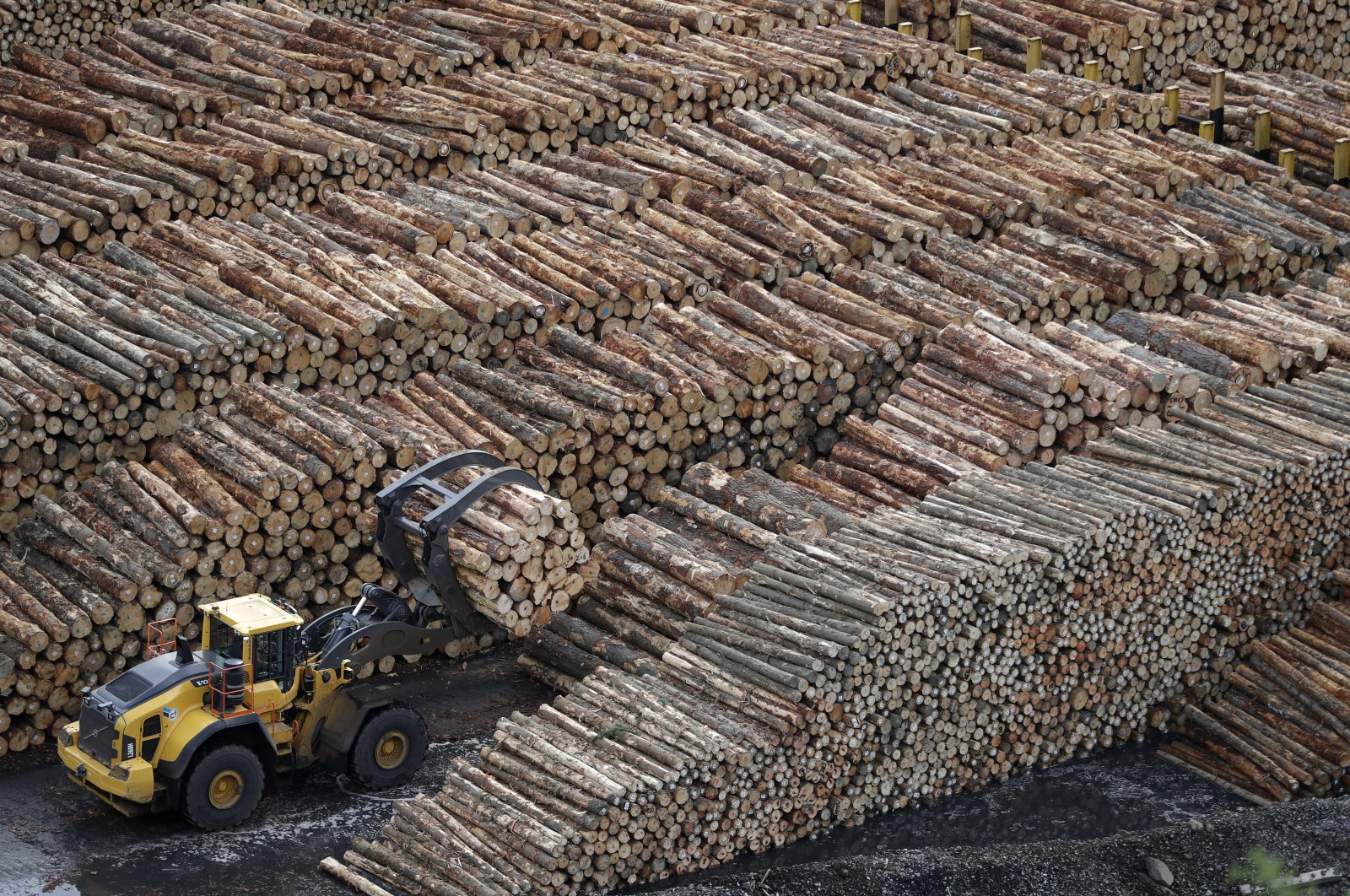 Logs are prepared for export at Lyttelton Port near Christchurch, New Zealand, June 3, 2020. (AP Photo)