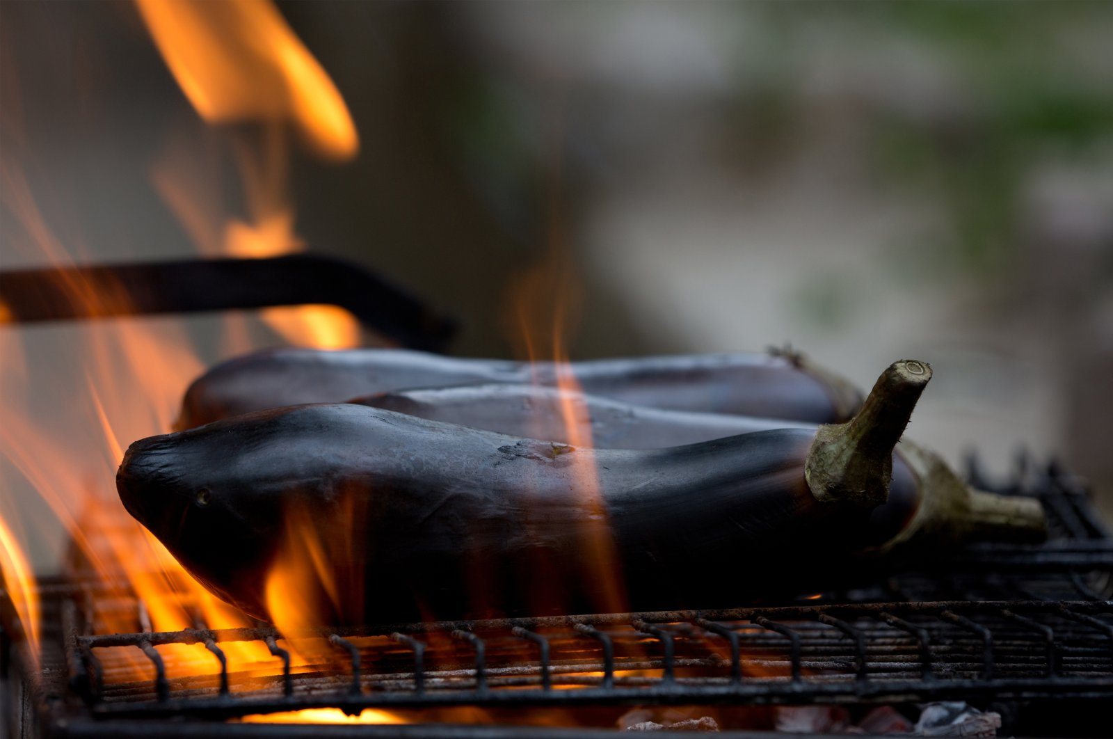 Barbecuing or smoking eggplants are one of the tastiest ways to prepare the dark-skinned vegetables. (Shutterstock Photo)