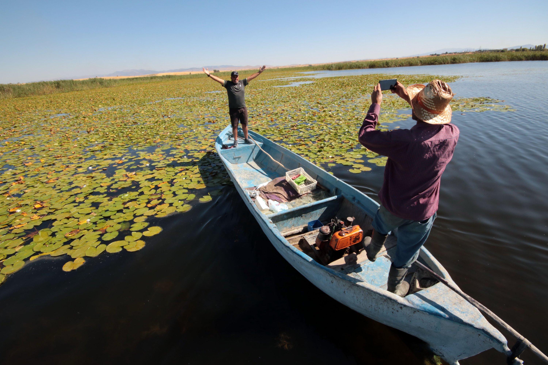 2020年8月20日,當地漁民通過提供服務來幫助希望在Bey?ehir湖拍照的睡蓮的游客。(DHA照片)