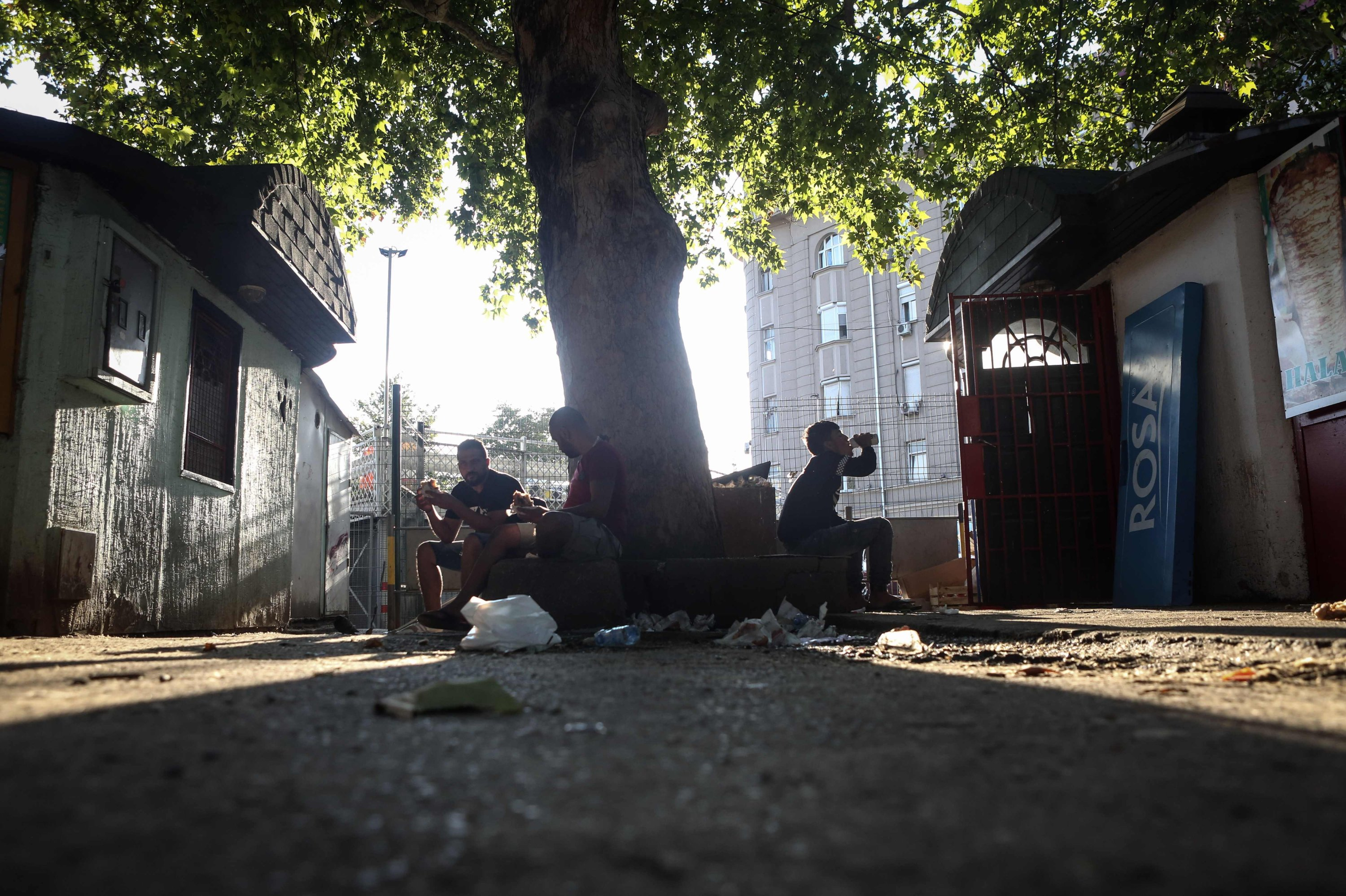 A group of migrants rest at a park in downtown Belgrade, Aug. 19, 2020. (AFP)