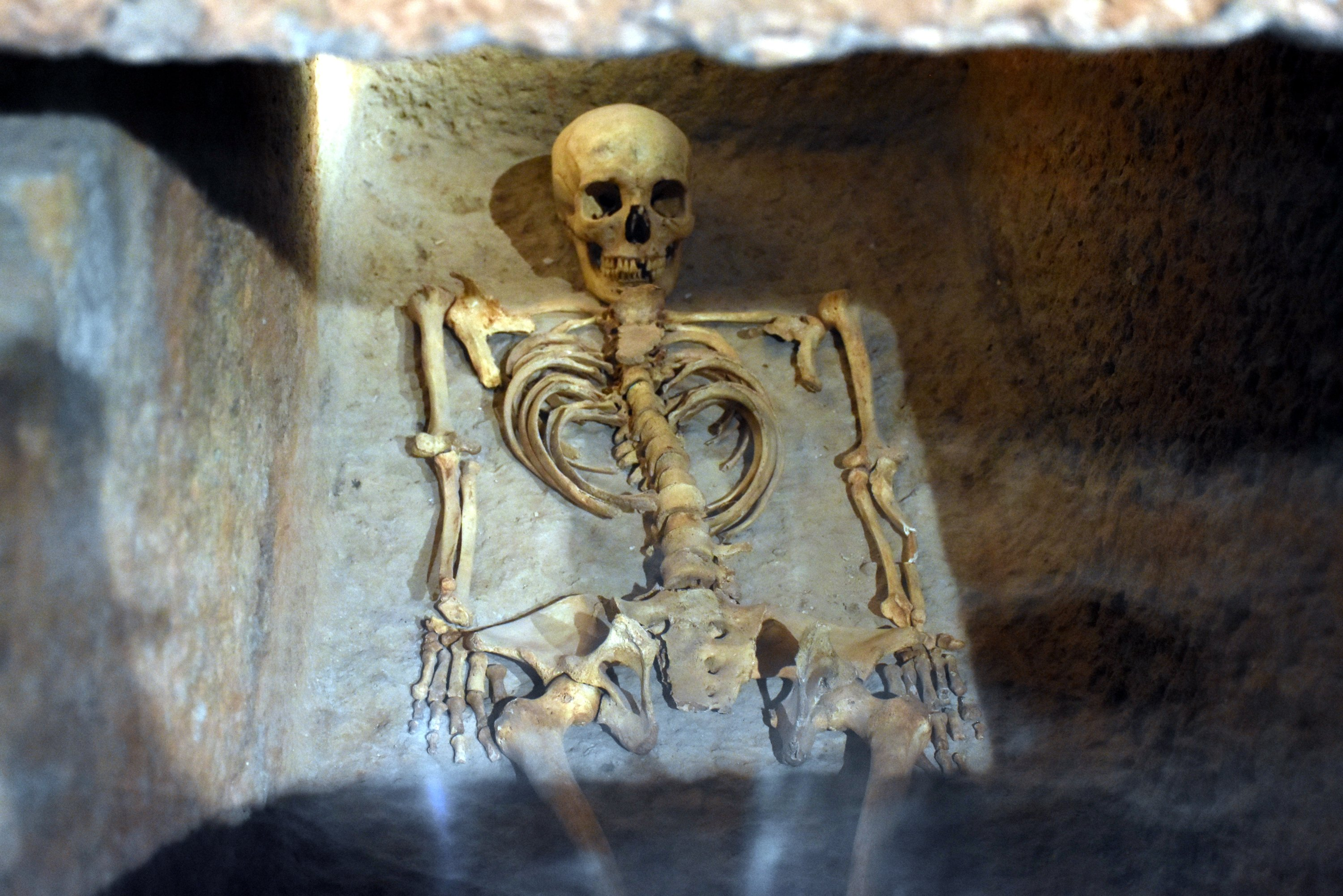 The skeleton of the 'Carian Princess' found inside the sarcophagus.