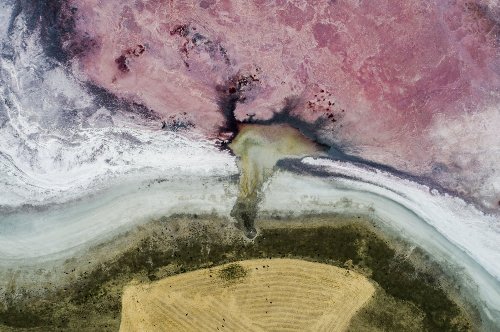 A bird's-eye view of dried-up Lake Küçük and its surroundings in Konya, central Turkey, Aug. 27, 2020. (DHA Photo)