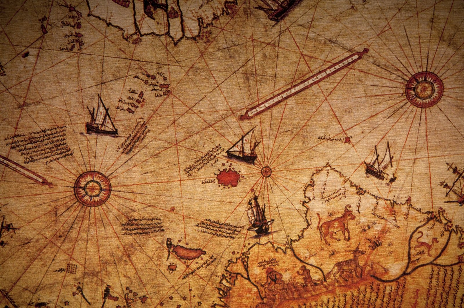 Full-frame view of Piri Reis' world map. (iStock Photo)
