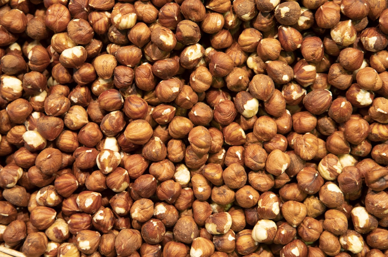 """Often referred to as the """"green gold,"""" fresh and unroasted hazelnuts are a great source of nutrients. (iStock Photo)"""