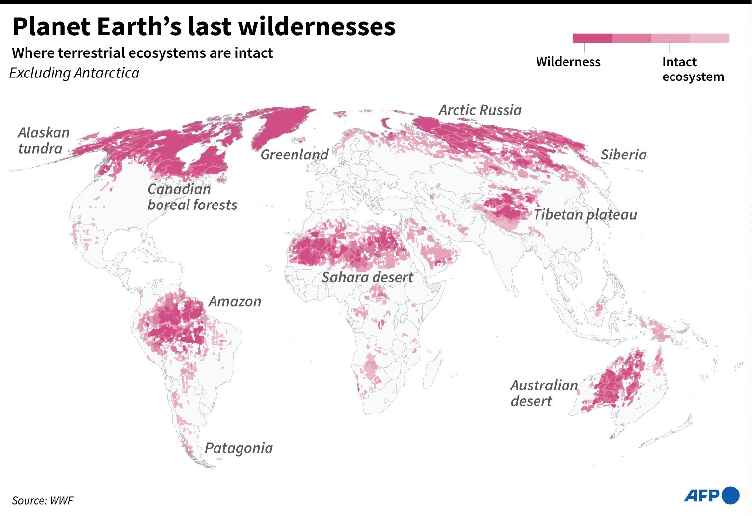 World map highlighting areas where terrestrial ecosystems remain intact.