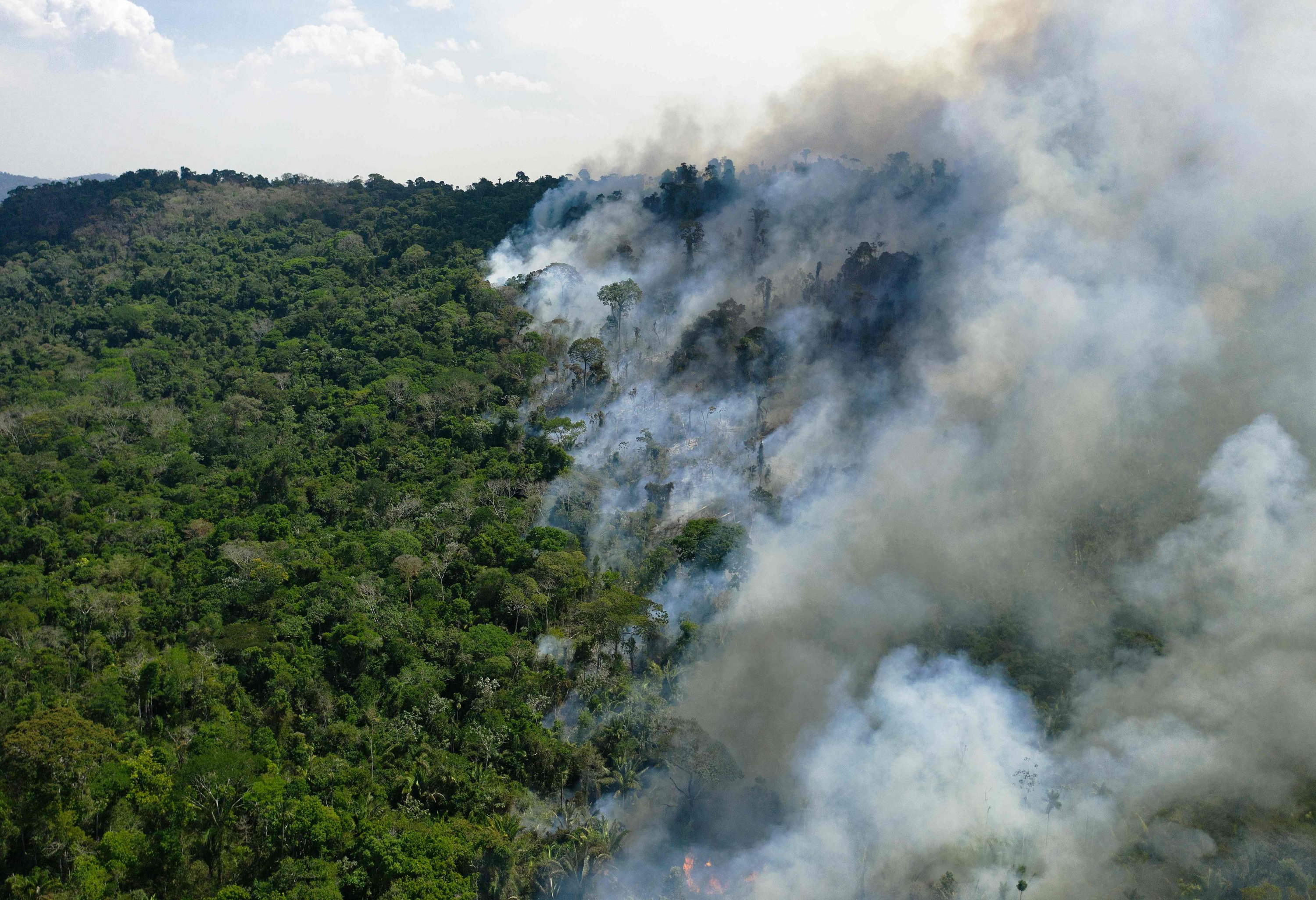 Aerial view of a burning area of Amazon rainforest reserve, south of Novo Progresso in Para state, Aug. 16, 2020. (AFP Photo)