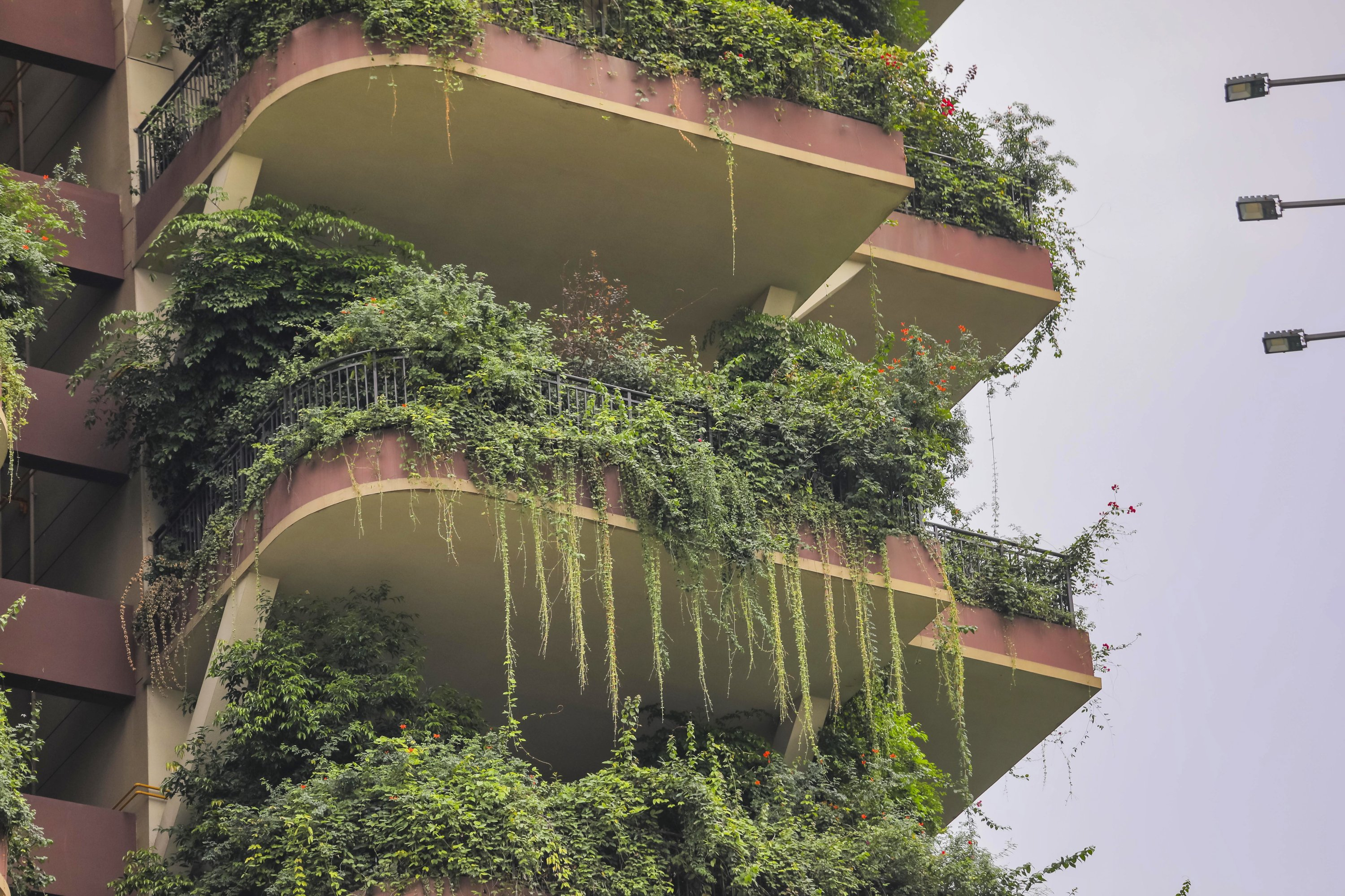 Balconies at Qiyi City Forest Garden residential buildings complex are overrun by plants in Chengdu, China, Sept. 15, 2020. (EPA Photo)