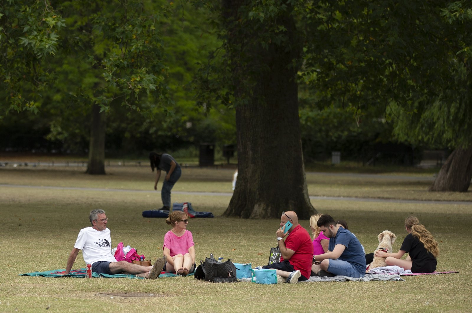 A group of people has a picnic at Regents Park in London, Britain, amid the coronavirus pandemic, Aug. 5, 2020. (PA via Reuters)