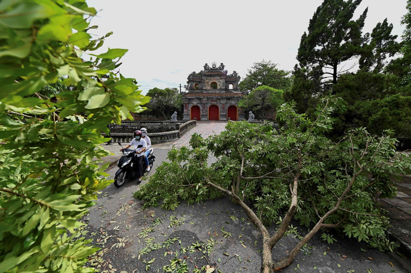 A motorist avoids a fallen tree branch due to tropical storm Noul in Hue city, as the storm hits central Vietnam, Sept. 18, 2020. (AFP Photo)