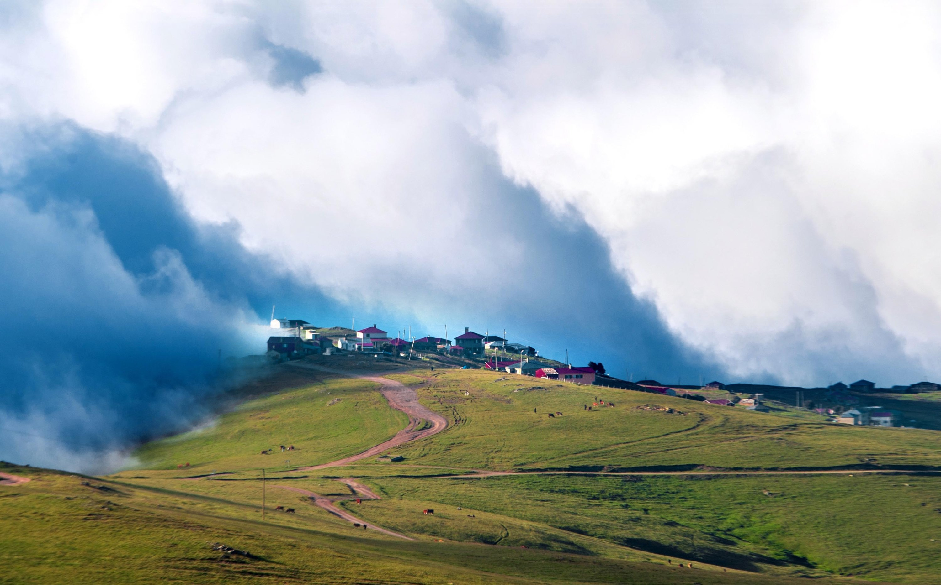 With its cloudy backdrop and verdant landscape, Trabzon's Beypınarı Plateau is a photographer's paradise. (DHA Photo)