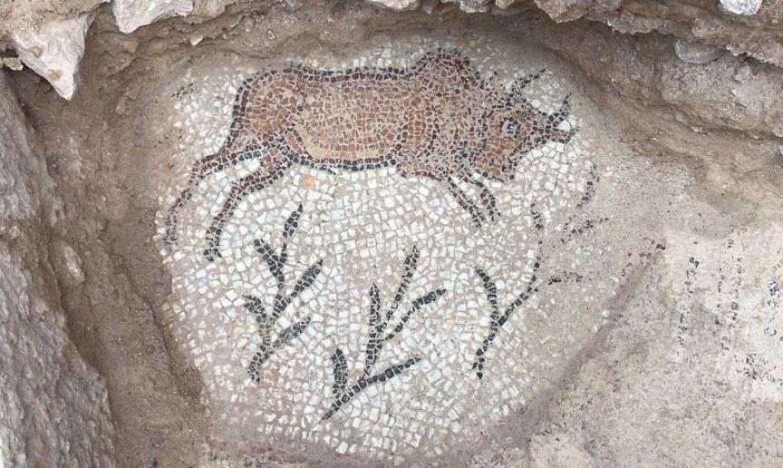 Γκρο πλαν ενός μωσαϊκού ζώων στην αρχαία πόλη της Αδριανόπολης, Καραμπούκ, βόρεια Τουρκία, 2 Φεβρουαρίου 2018. (AA PHOTO)