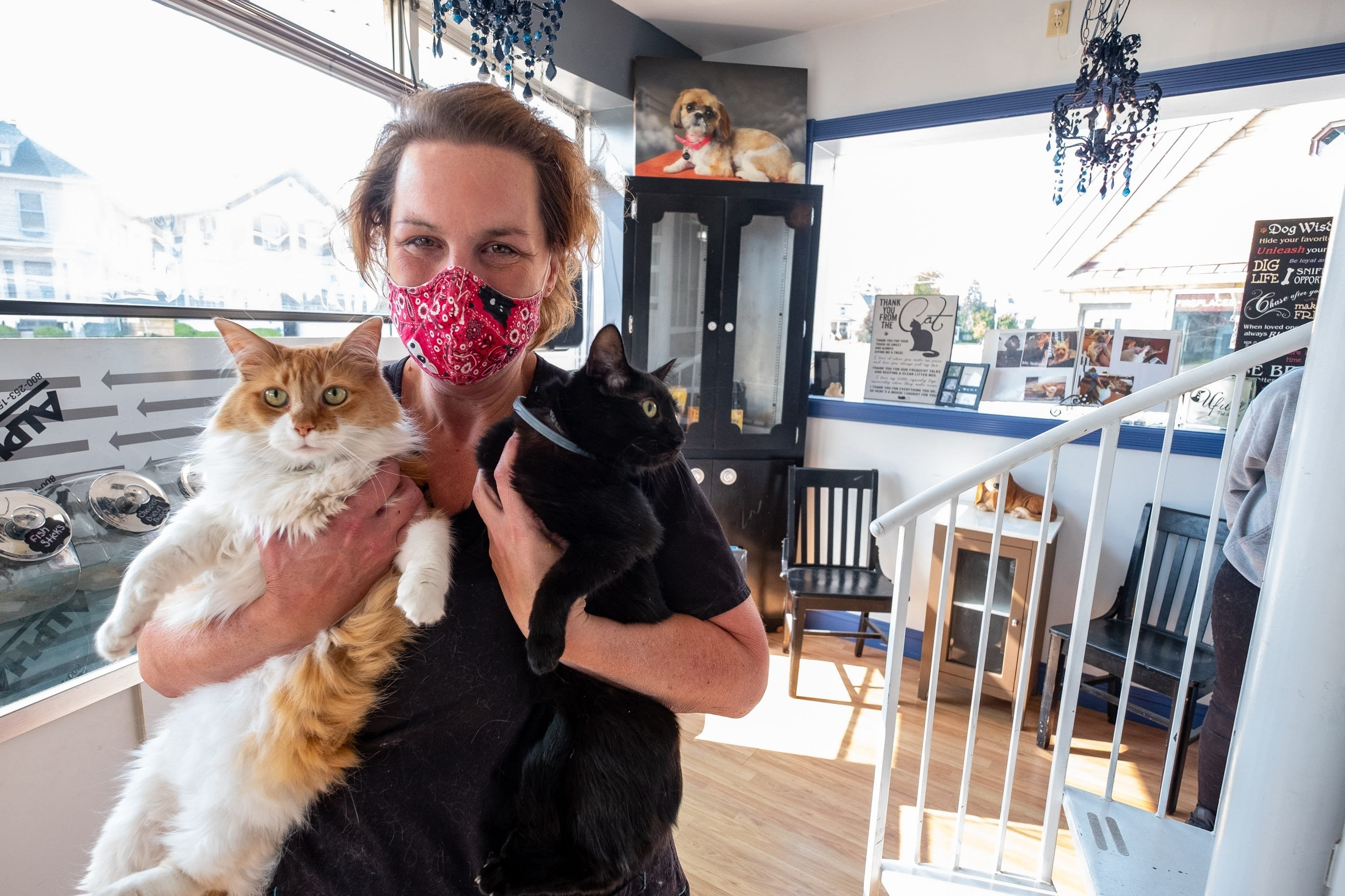 Spring Burrell, owner of Ufuri Pet Salon, poses for a portrait with Banjo and Eleanor, two cats that live at the business, Tuesday, Sept. 22, 2020, at her new location. (REUTERS Photo)
