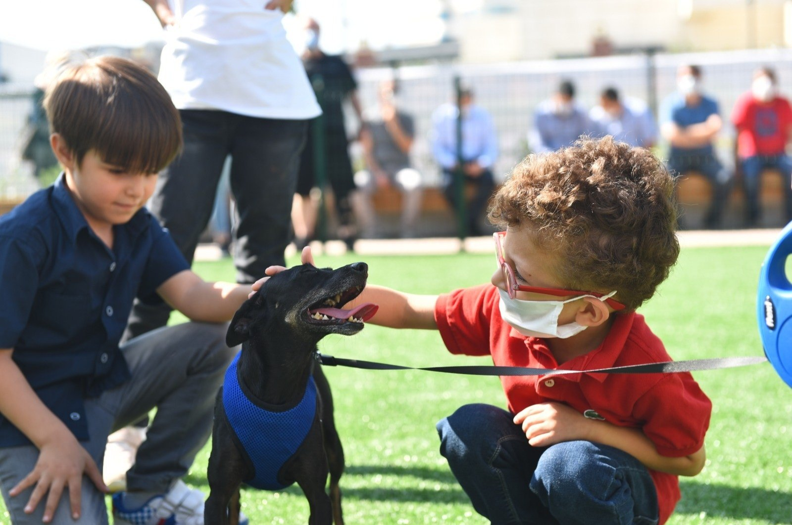 Children pet a dog during a special event to mark World Animal Day, in Istanbul, Turkey, Oct.4, 2020. (IHA Photo)