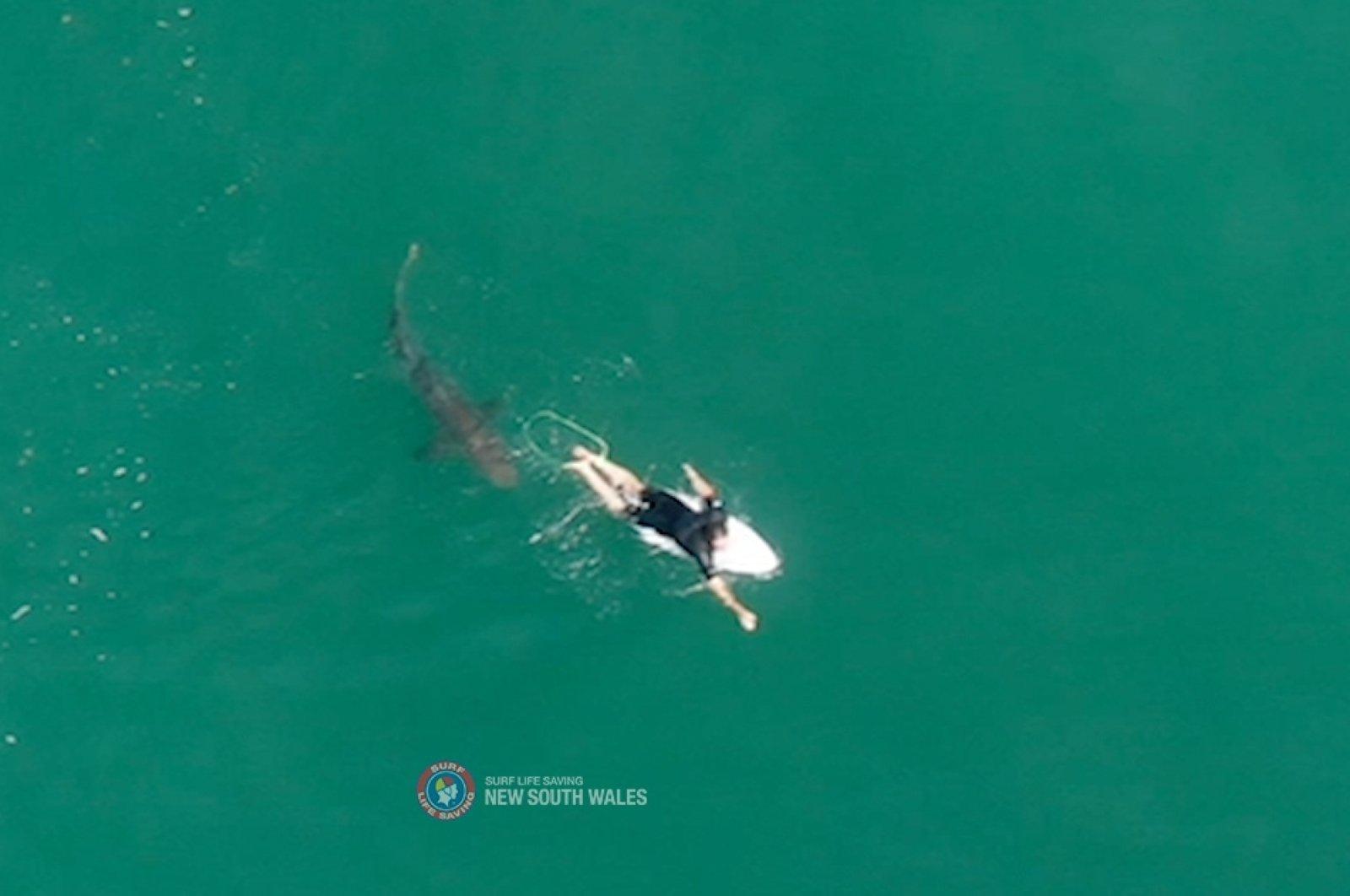 A shark swims close to world championship tour surfer Matt Wilkinson at Sharpes Beach, New South Wales, Australia, Oct. 7, 2020. (Surf Life Saving NSW via Reuters)
