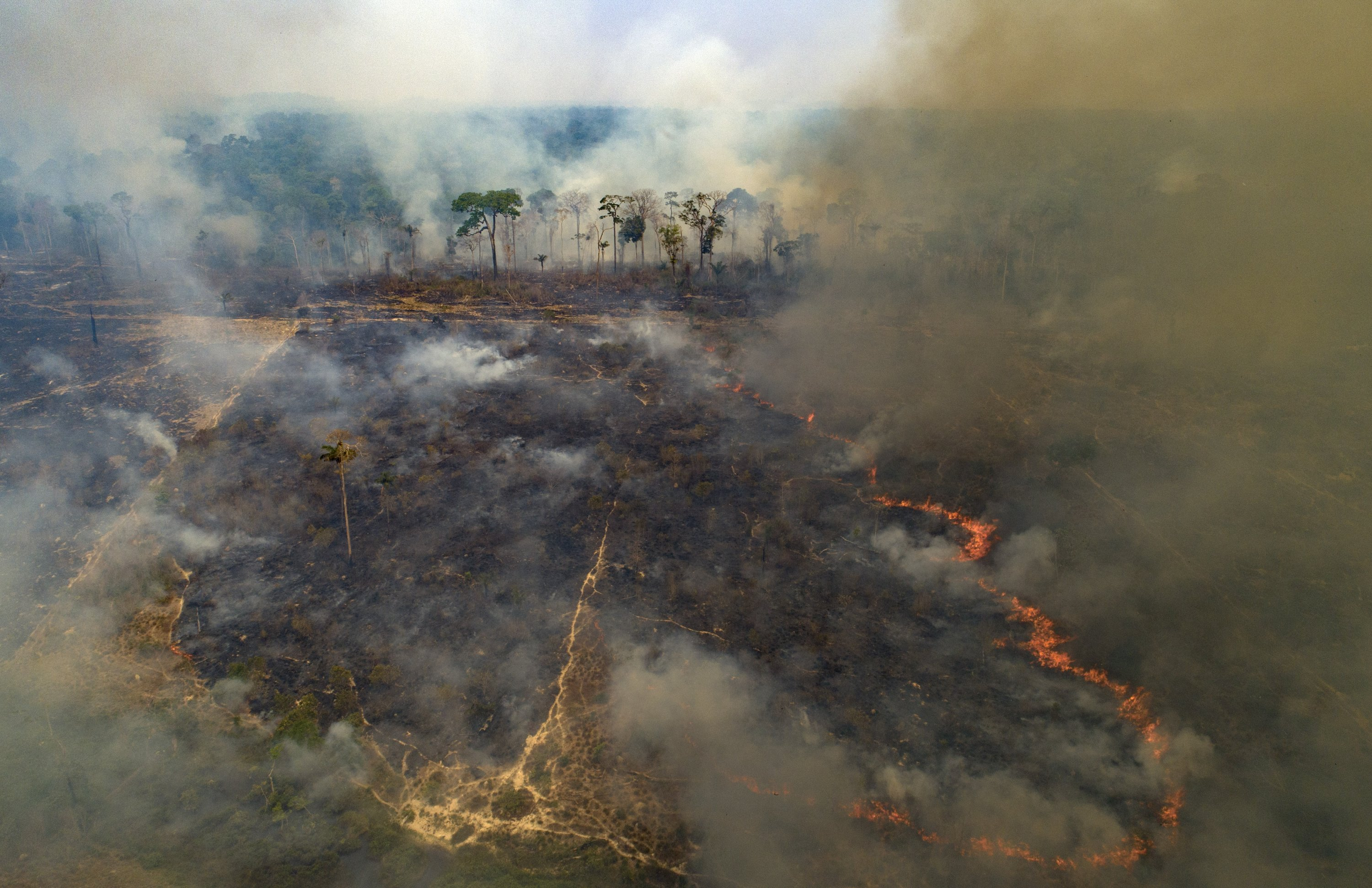 Fire consumes land deforested by cattle farmers near Novo Progresso, Para state, Brazil, Sunday, Aug. 23, 2020. (AP Photo)