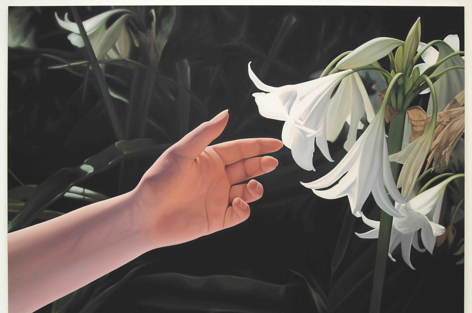 "Mustafa Hulusi, ""Untitled (White Lily and Hand)"" 213 by 305 centimeters, 2015."