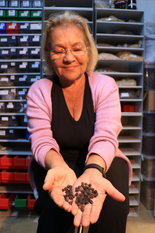 Nardane Kuşçu holds out some seeds from her 1,200-strong collection on her farmland in Kandıra, Kocaeli, northwest Turkey, Oct. 19, 2020. (AA Photo)