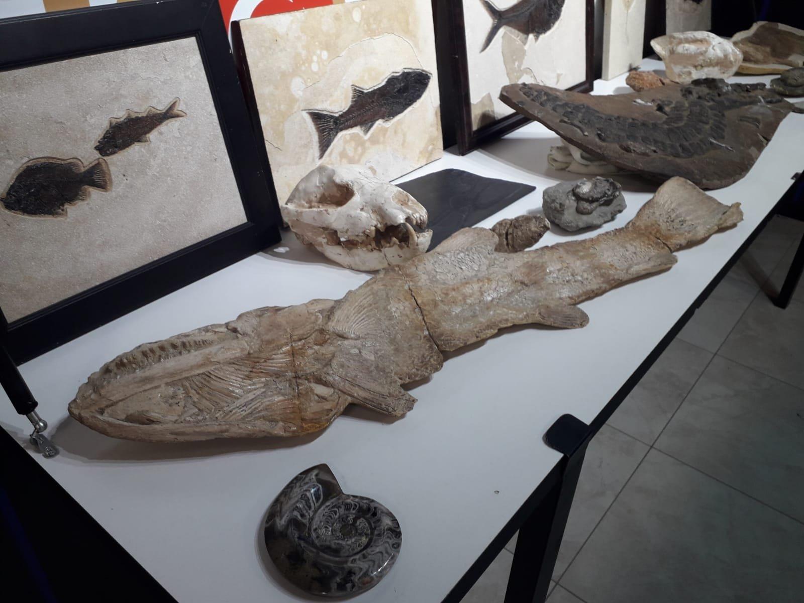 Turkish police seize ancient fossils from Adnan Oktar cult