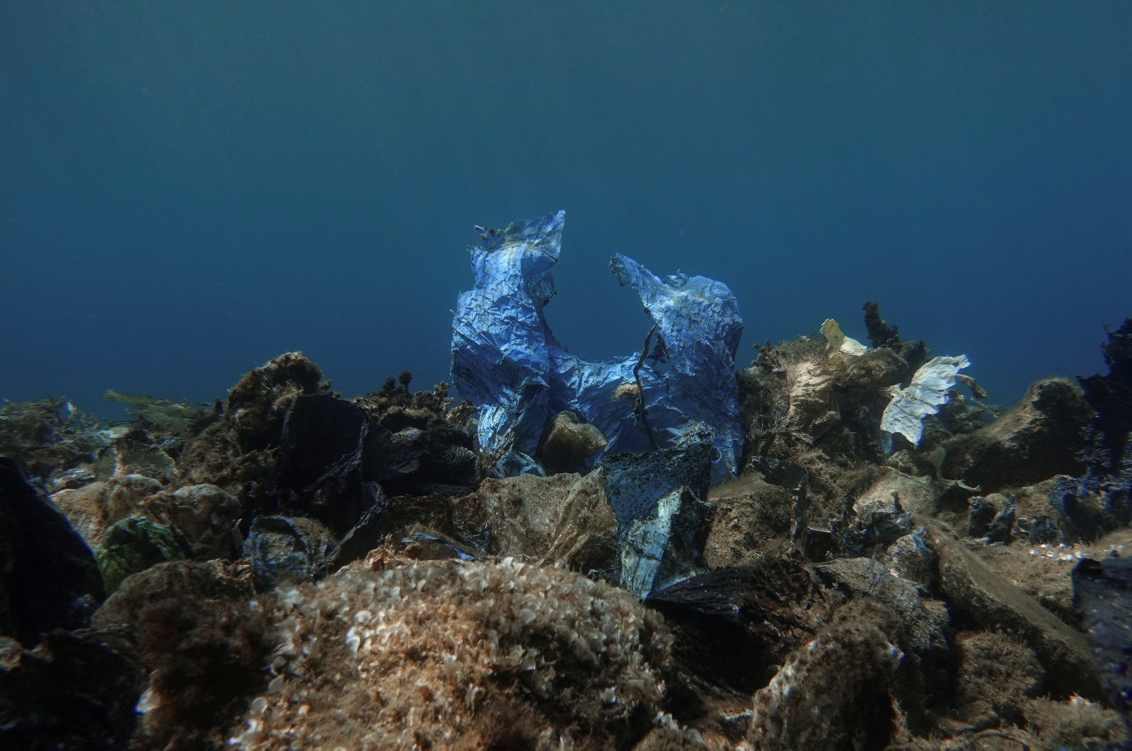 A plastic bag is seen at the bottom of the sea, off the island of Andros, Greece, July 20, 2019. (REUTERS Photo)