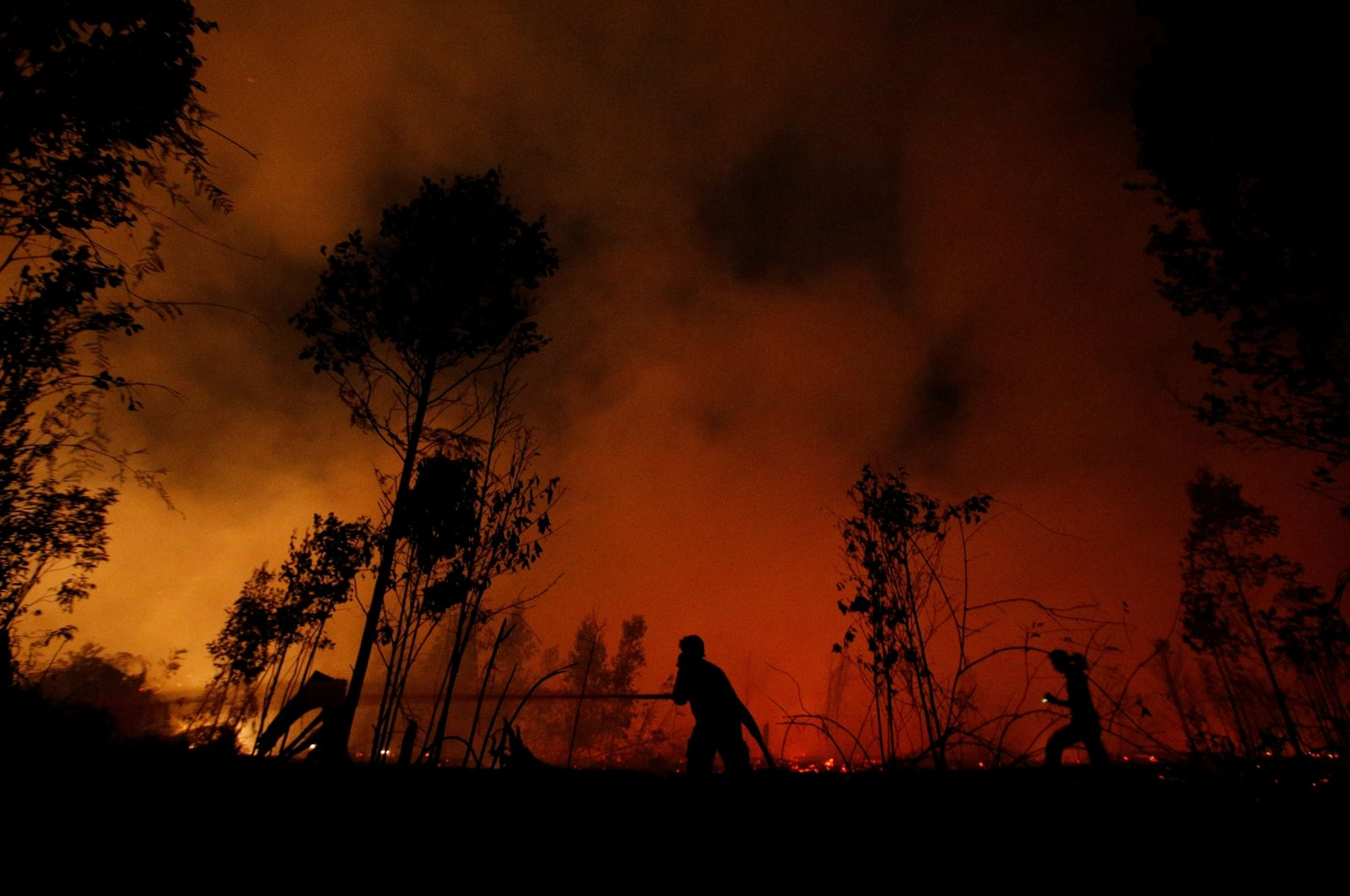 Firefighters try to extinguish forest fires at Sebangau National Park in Palangka Raya, Central Kalimantan province, Indonesia, Sept. 14, 2019. (Reuters Photo)