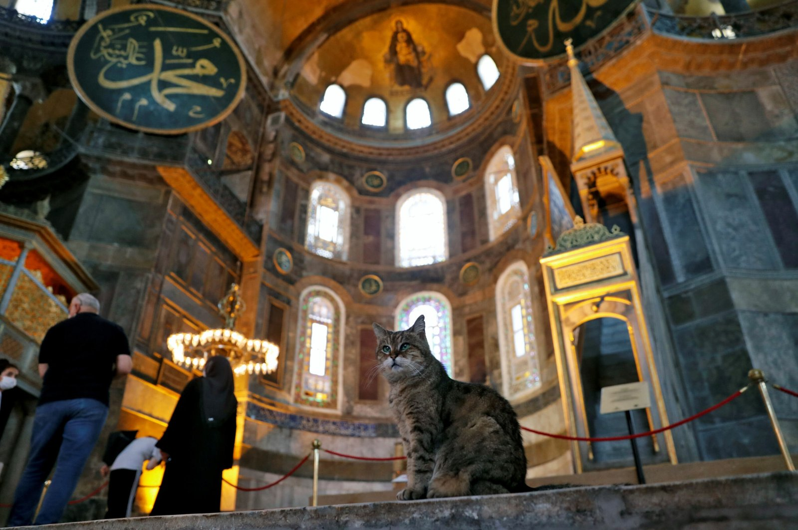 Hagia Sophia Grand Mosque's resident stray cat Gli sits inside the famous landmark, in Istanbul, Turkey, July 2, 2020. (REUTERS Photo)