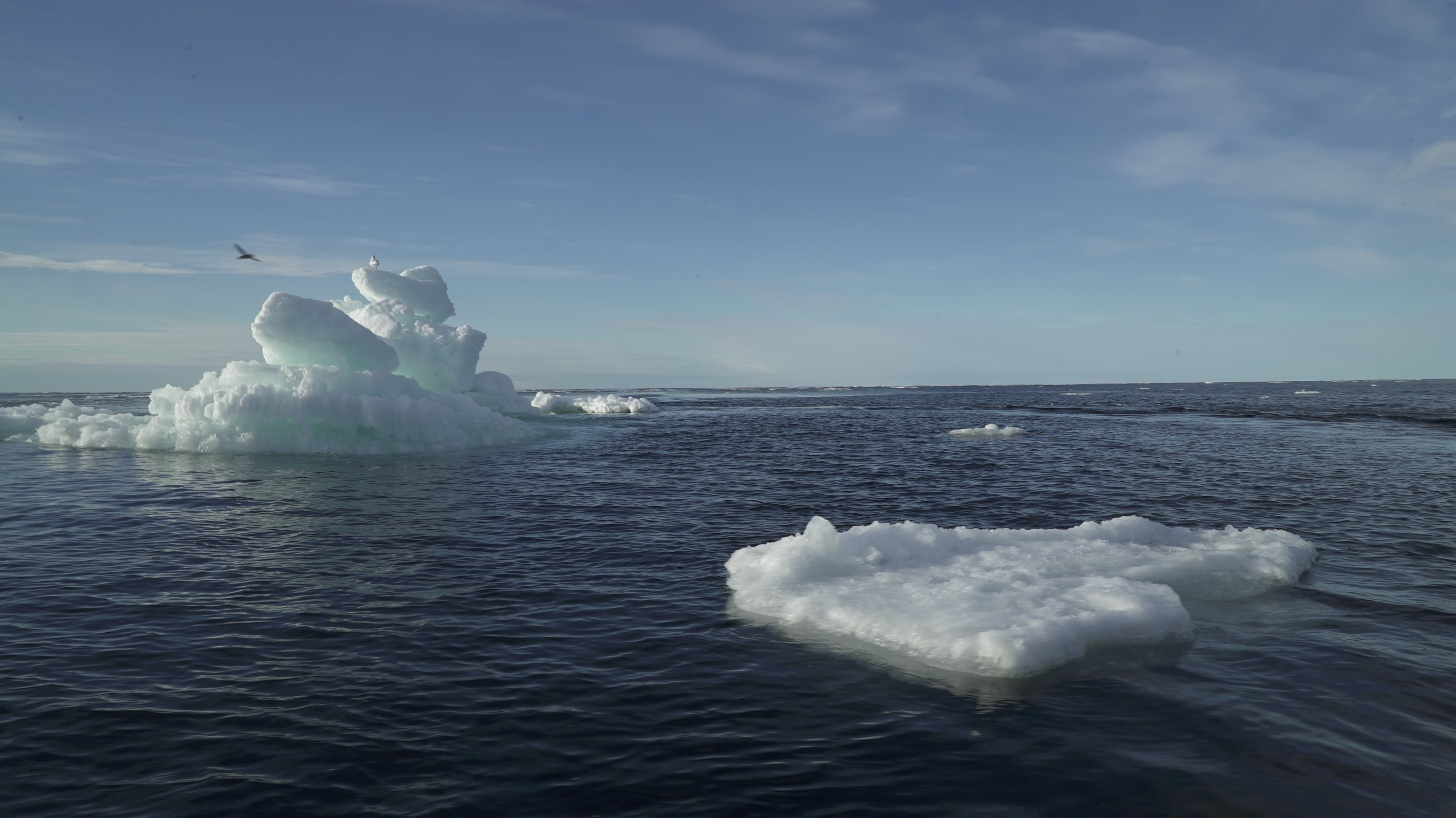 Floating ice is seen during the expedition of Greenpeace's Arctic Sunrise ship at the Arctic Ocean, September 14, 2020. (REUTERS Photo)