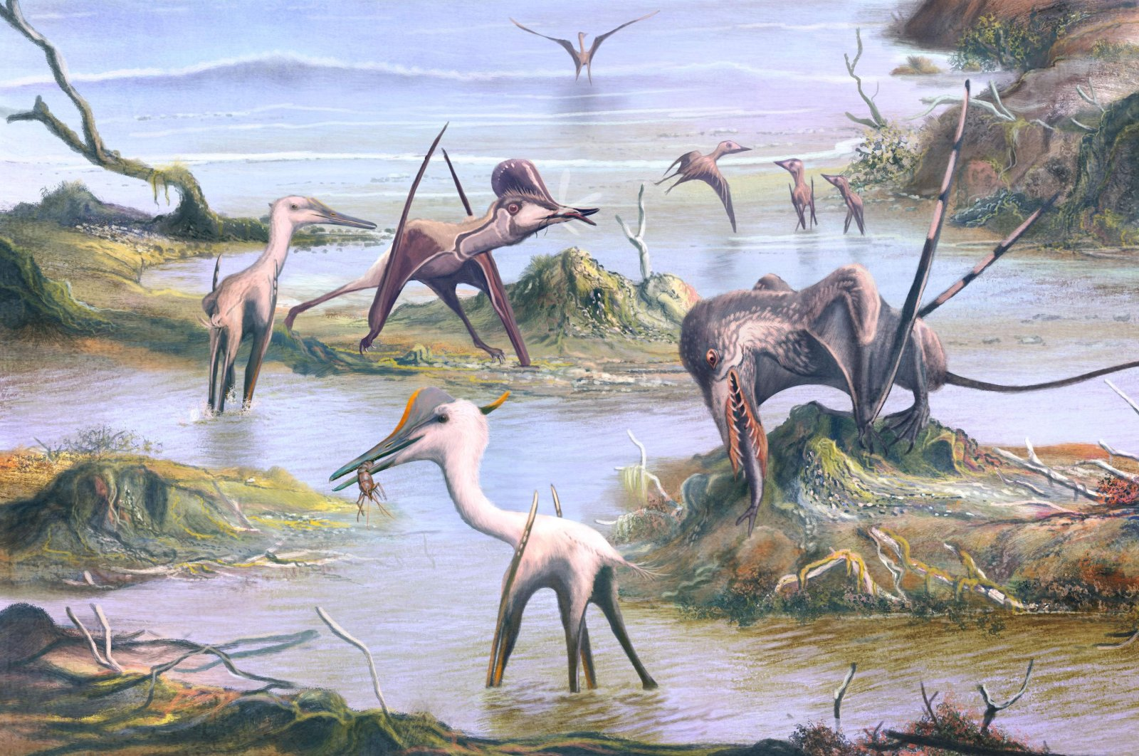 This handout picture released by the University of Birmingham on October 28, 2020, shows an artist's impression of a scene from southern Germany 150 million years ago, depicting the varied diets of pterosaurs, as inferred by dental microwear texture analysis. (Photo by Mark WITTON / UNIVERSITY OF BIRMINGHAM / AFP)