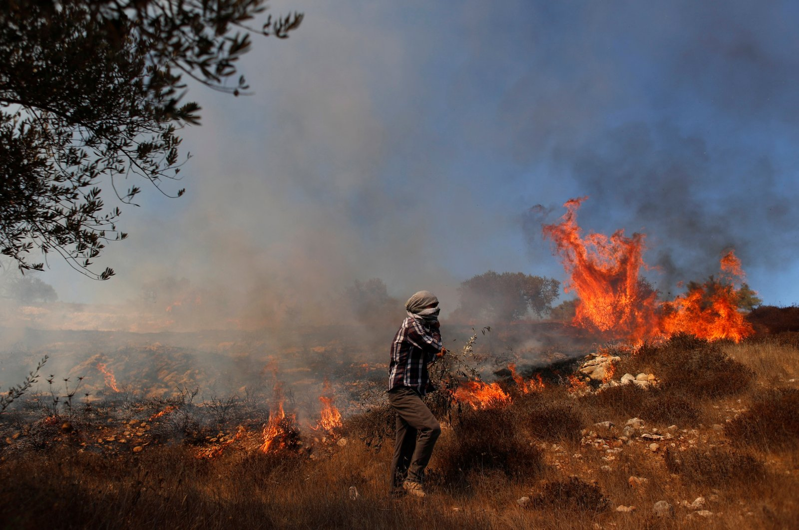 Grass burns in an olive field after Israeli forces fired tear gas canisters during a Palestinian protest against Jewish settlements, near Ramallah in the Israeli-occupied West Bank, Palestine, Oct. 16, 2020. (Reuters Photo)