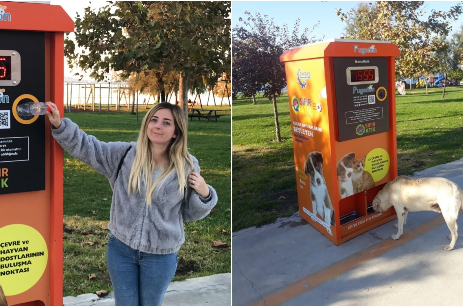 The vending machines created by Pugedon take bottles deposited for recycling and dispenses food for the city's strays. (AA Photos)