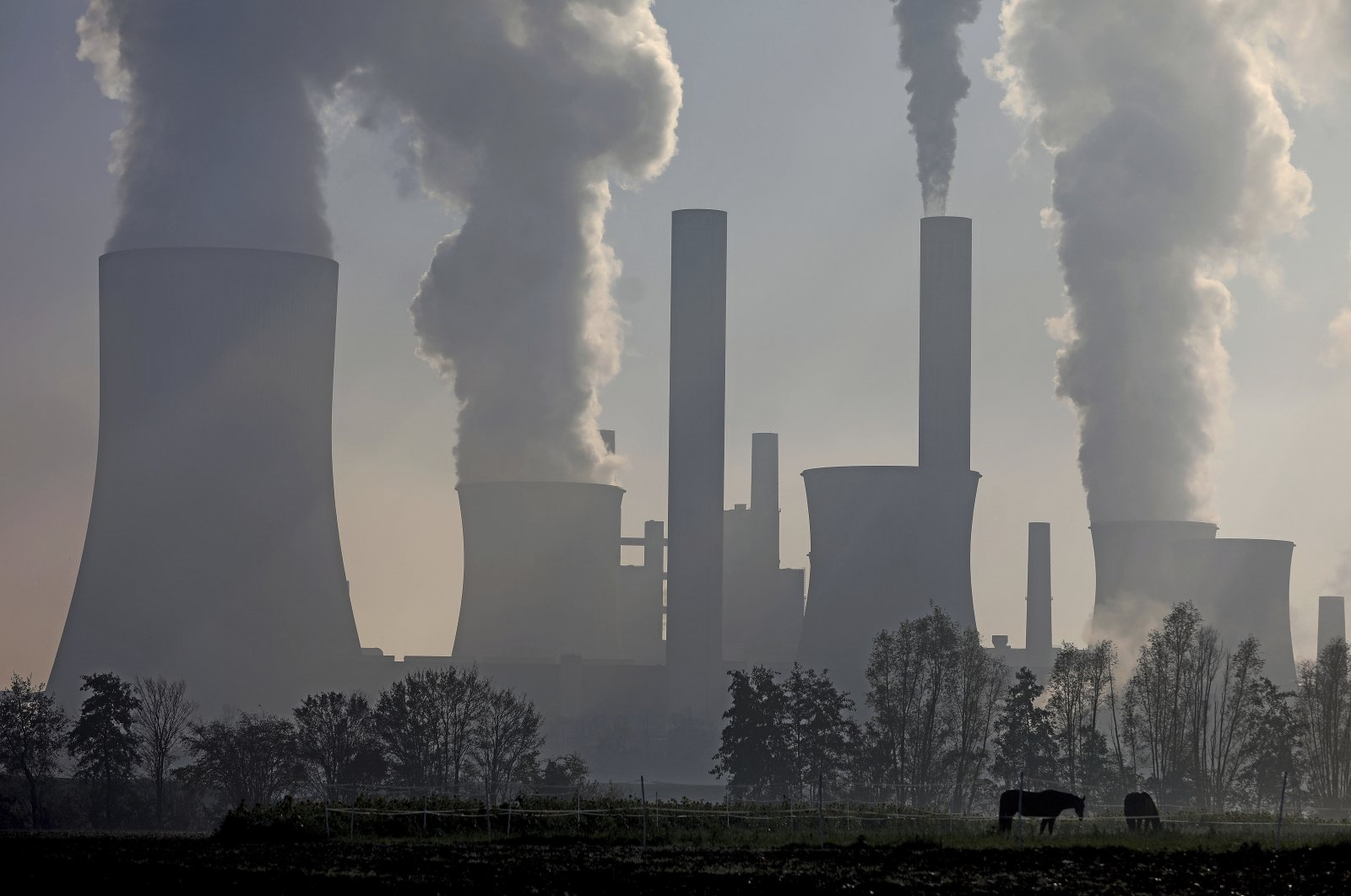 Two horses are standing in a pasture in front of the RWE lignite power plant Niederaussem, Germany, Nov. 5, 2020. (dpa via AP)