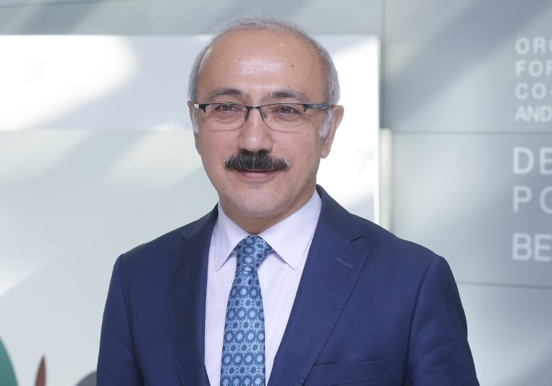 Newly appointed Treasury and Finance Minister Lütfi Elvan. (AA File Photo)