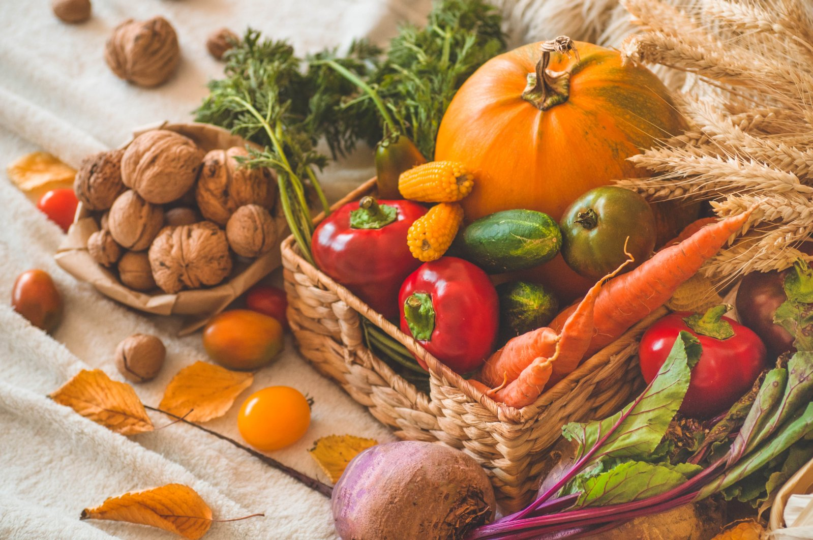 Fall has an array of delicious and colorful fruits and vegetables to offer. (Shutterstock Photo)