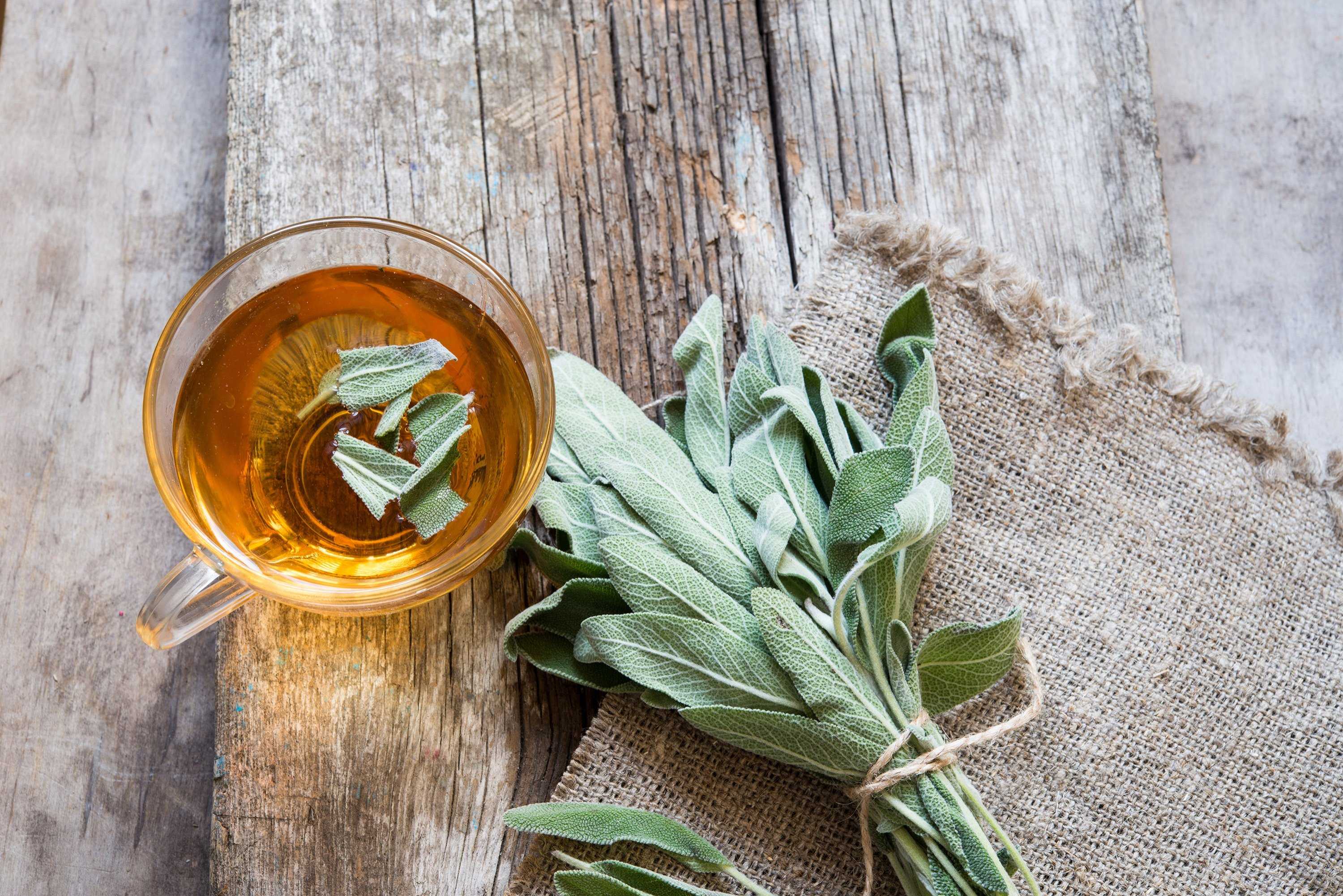 Sage is one of the most popular Mediterranean herbs and commonly consumed as tea in winter. (Shutterstock Photo)
