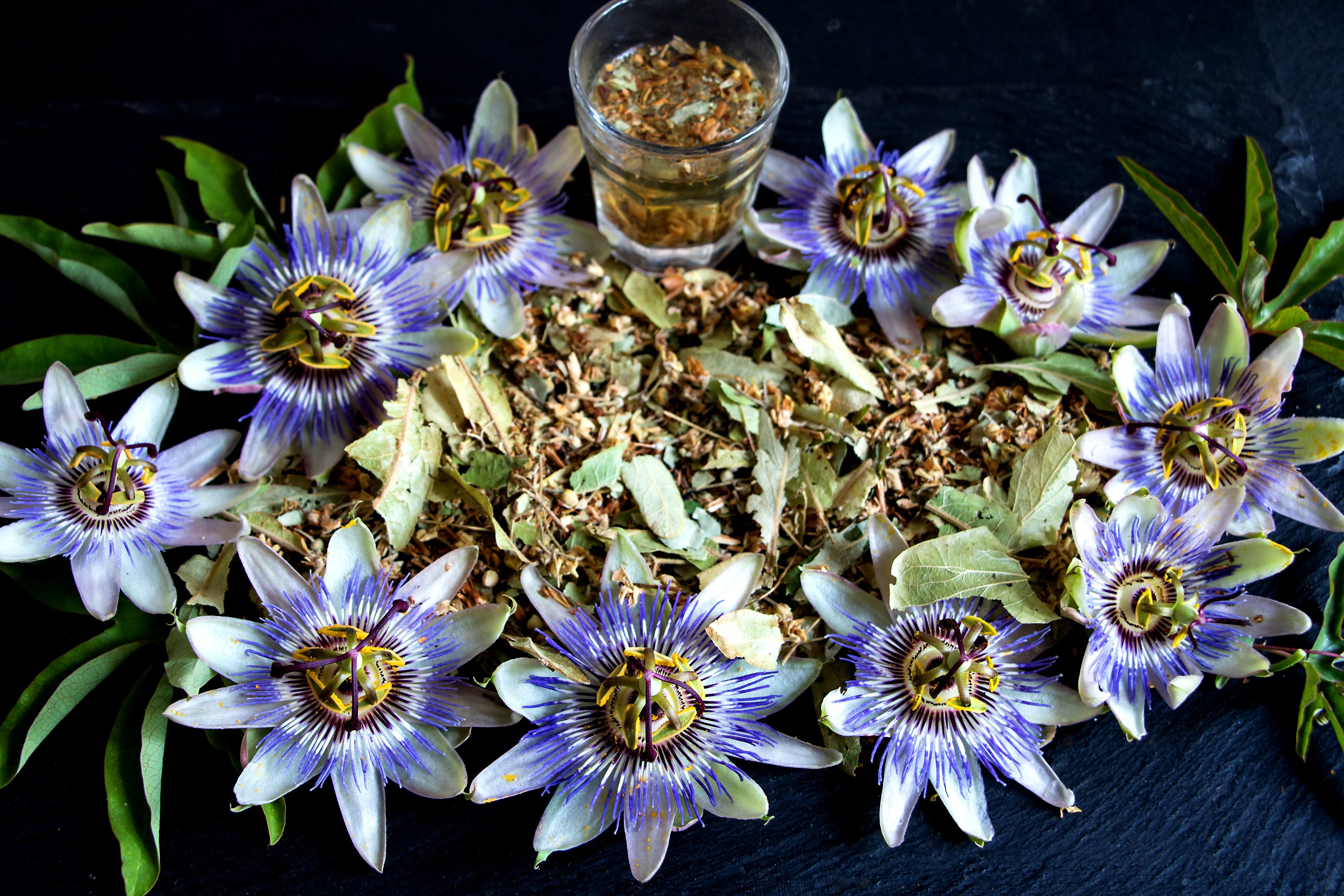 A cup of passionflower tea before bedtime could help increase total sleep time. (Shutterstock Photo)