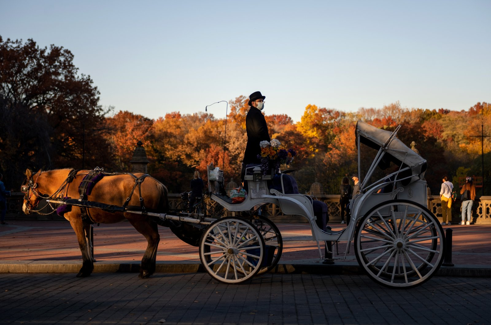 A coachman wearing a mask to protect against the coronavirus looks out from his horse-drawn carriage in Central Park, New York City, New York, Nov. 9, 2020. (Photo by Getty Images)