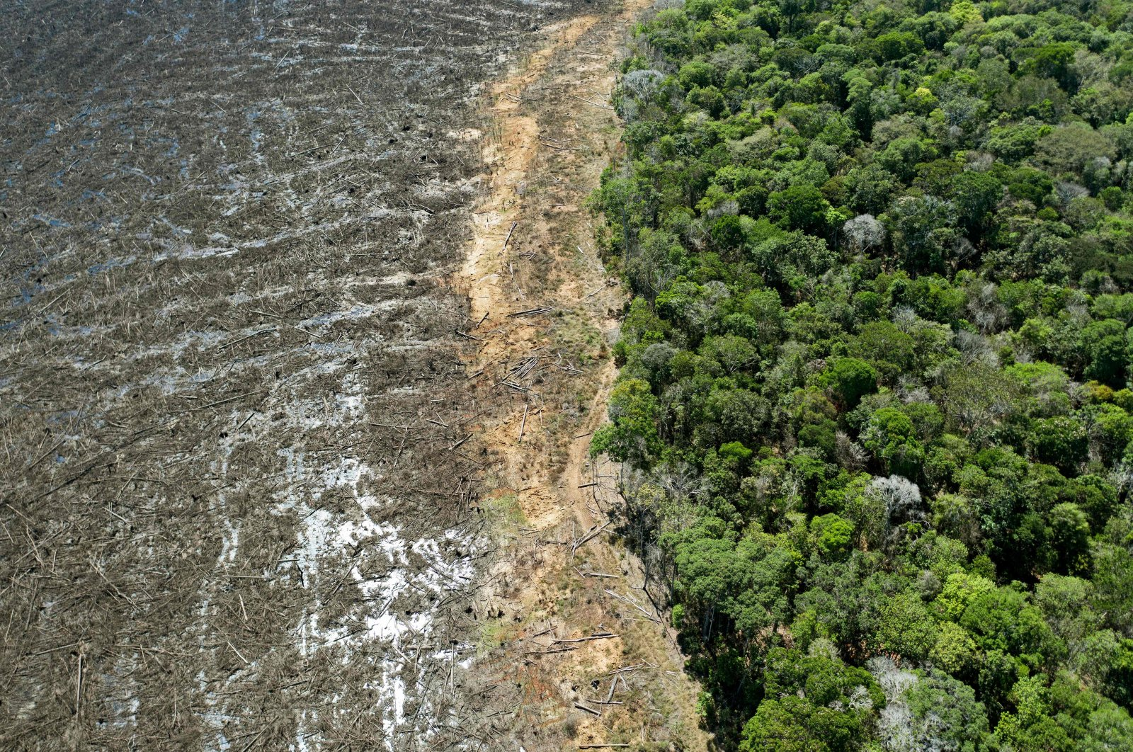 An aerial view of a deforested area close to Sinop, Mato Grosso State, Brazil, Aug. 7, 2020. (AFP Photo)