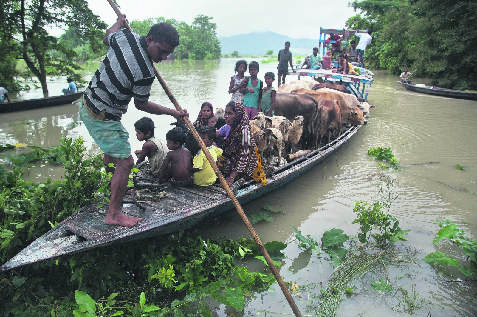 A boat carries flood-affected villagers and cattle to a highland in the Katahguri village along the river Brahmaputra, east of Gauhati, India, July 14, 2019. (AP Photo)
