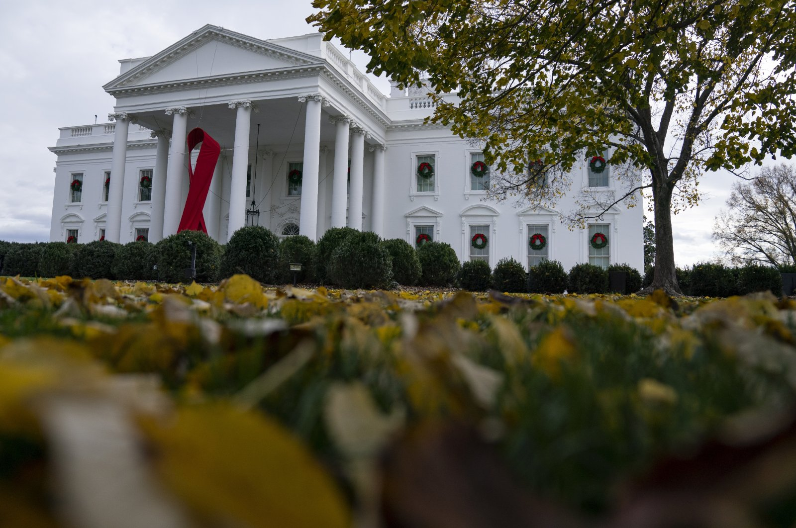 A ribbon hangs on the White House for World AIDS Day 2020, Dec. 1, 2020, in Washington. (AP Photo)