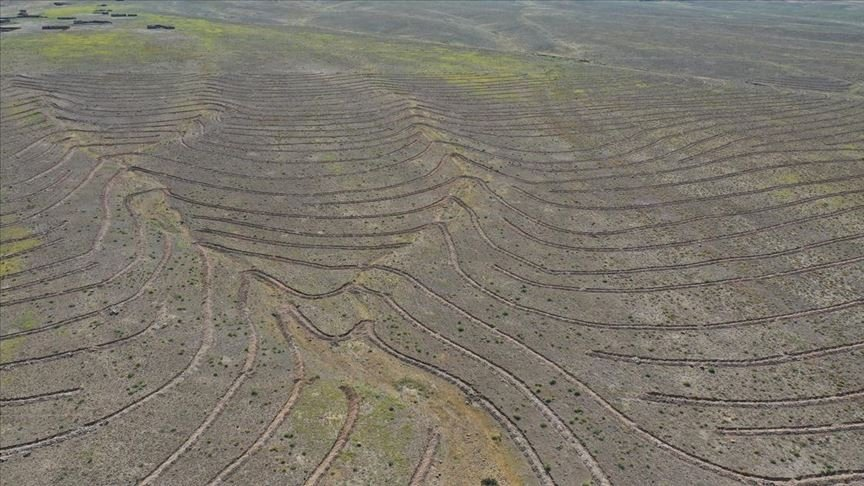 A view of land where terracing work was conducted to prevent erosion, in Iğdır, eastern Turkey, Aug. 19, 2020. (AA Photo)
