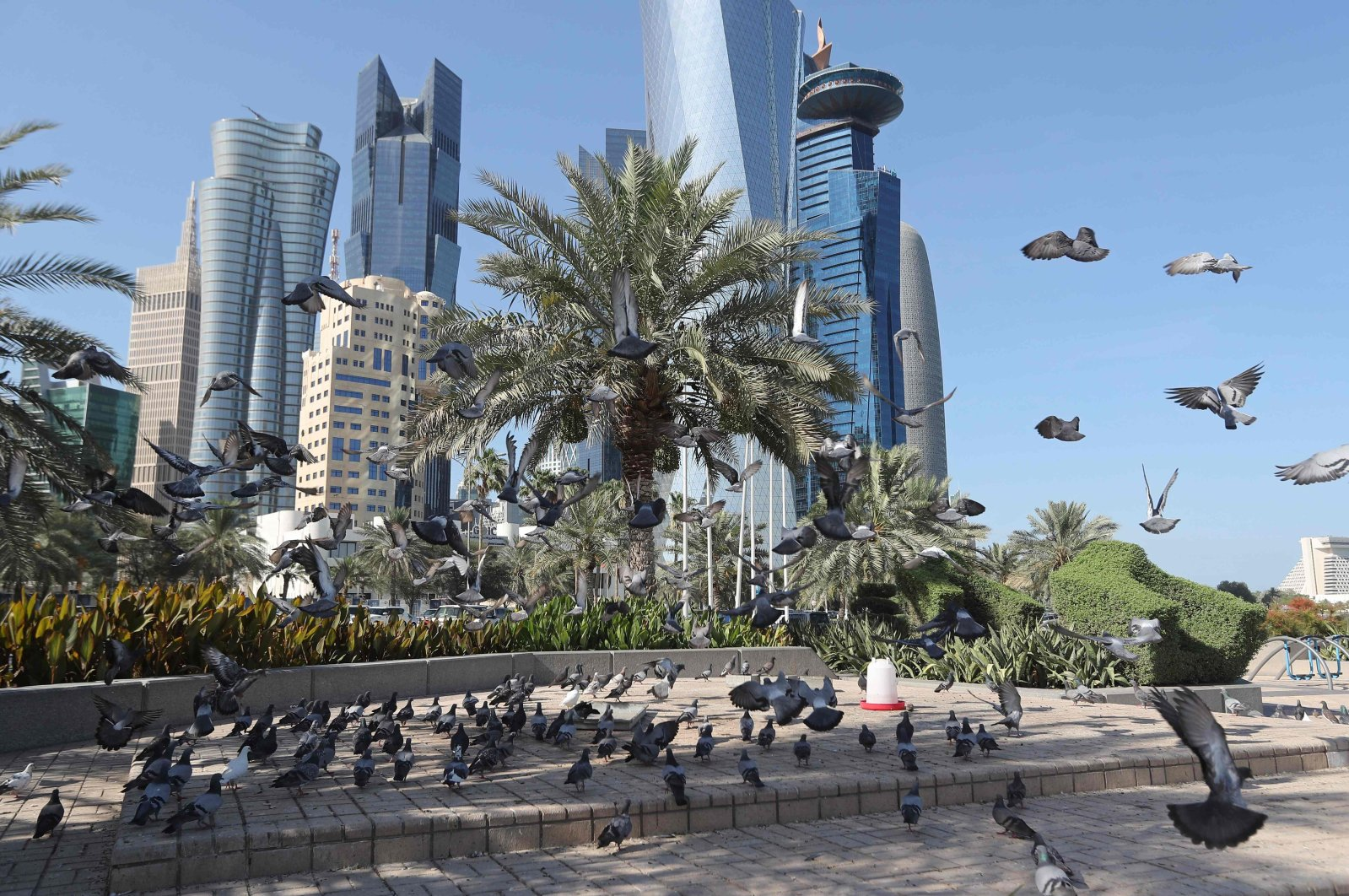 A general view shows pigeons flying above the Corniche in Doha, Qatar, June 5, 2017. (AFP Photo)